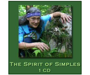 The Spirit of Simples - 1 CD
