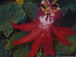 Cindy Maus Art