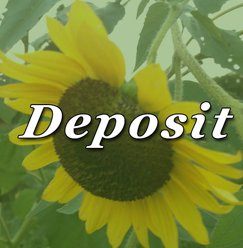 Deposits & Fees