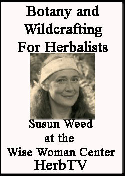 Botany for Herbalists DVD