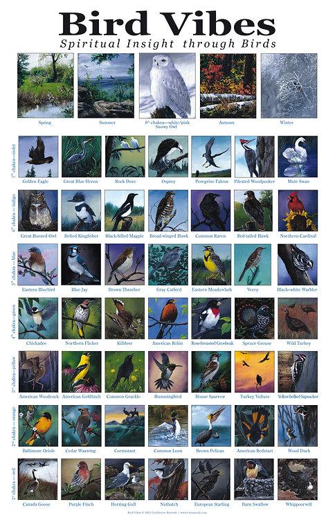 Bird Vibes