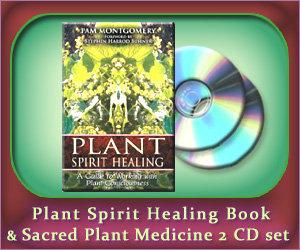 Plant Spirit Healing Book and Sacred Plant Medicine 2 CD set
