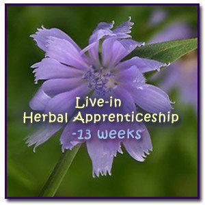 Live-in Herbal Apprenticeship-thirteen weeks