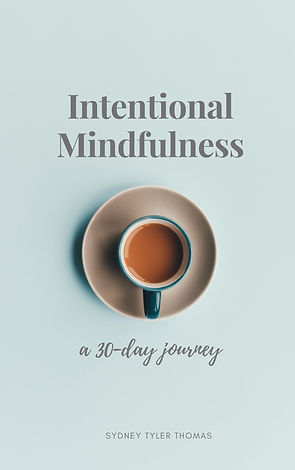 Cover_Intentional Mindfulness_FINAL04192