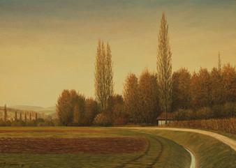 Herbst am Aabach bei Seengen