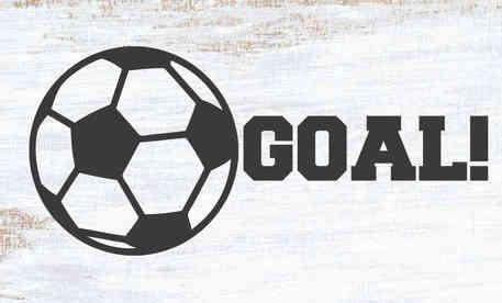 SPRT29 goal-soccer.jpg
