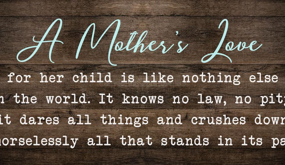 MOM3-A-mothers-love.jpg