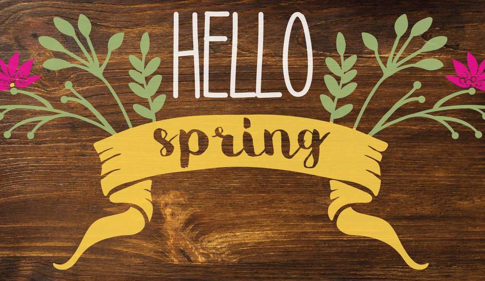 SPRNG1-Hello-spring-flowers.jpg