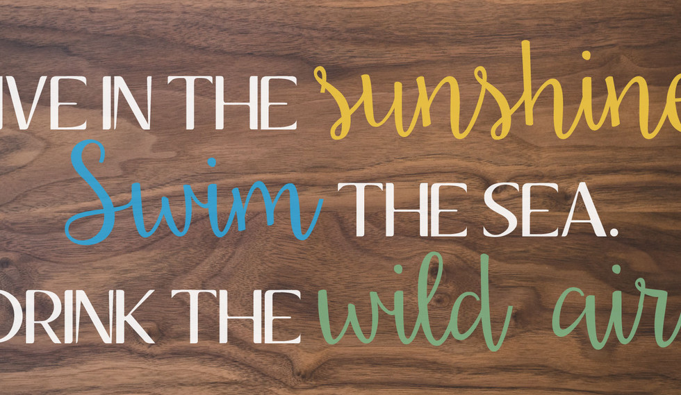 SUM4-Live-in-the-sunshine.jpg