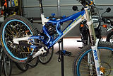 DSC06071.JPG