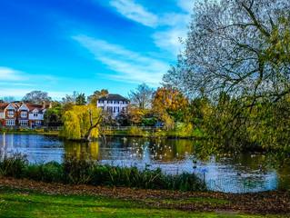 Chislehurst Commons Sold to Chislehurst Society