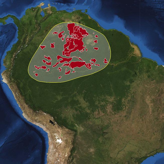 South America-2010+park.jpg