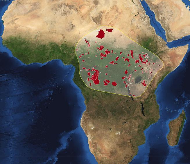 Africa-satellite-2010-park.jpg