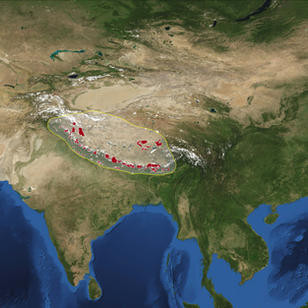 Asia World Park (Tibetan Plateau)