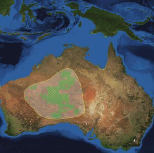 Oceania World Park (Australian desert)