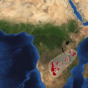 Africa World Park (Miombo woodlands)