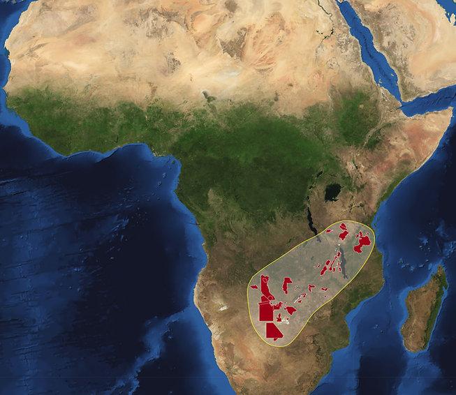 Africa-2010-park.jpg