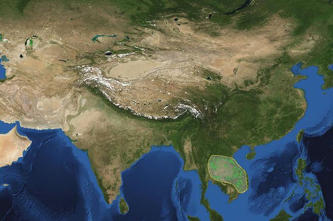 Asia-satellite-2020-park.jpg