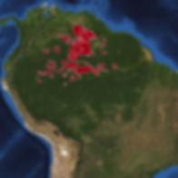 South America-2010.jpg