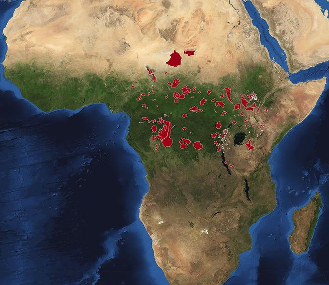 Africa-satellite-2010.jpg