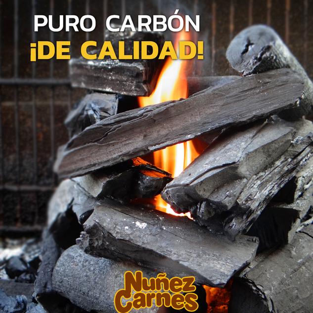Carbón de calidad en Hermosillo