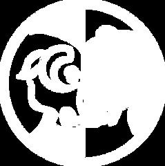 ndr_logo_white 2.png
