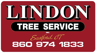 Lindon Tree Service in Connecticut, Licensed Arborist