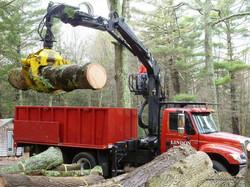 log truck loading big log