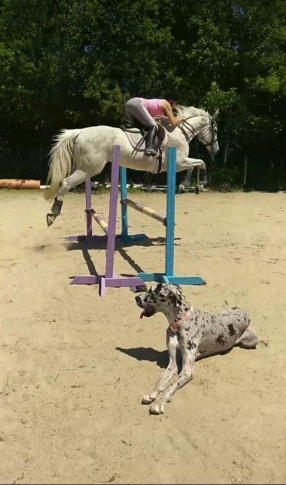 Jayne and pretty jump 1.jpg