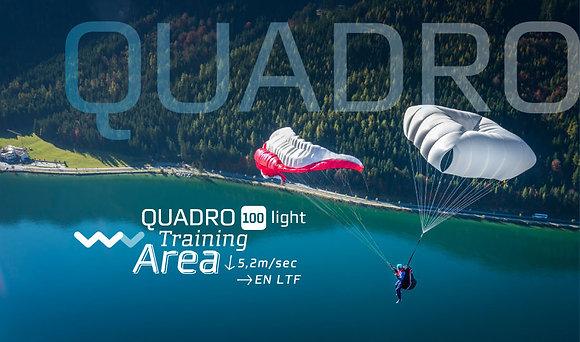 Quadro 100 light / Quadro 115