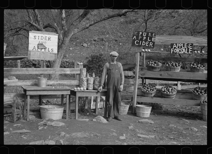 A mountain farmer sells apples and cider by the side of Lee Highway in Rockingham County_1935_arthur