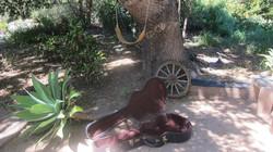 Music Retreat in Ojai