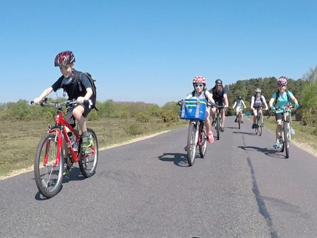 A New Forest Family Cycle Adventure