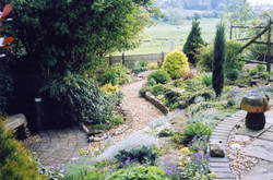 Hillside garden and paths, planting gives colour and interest all year round