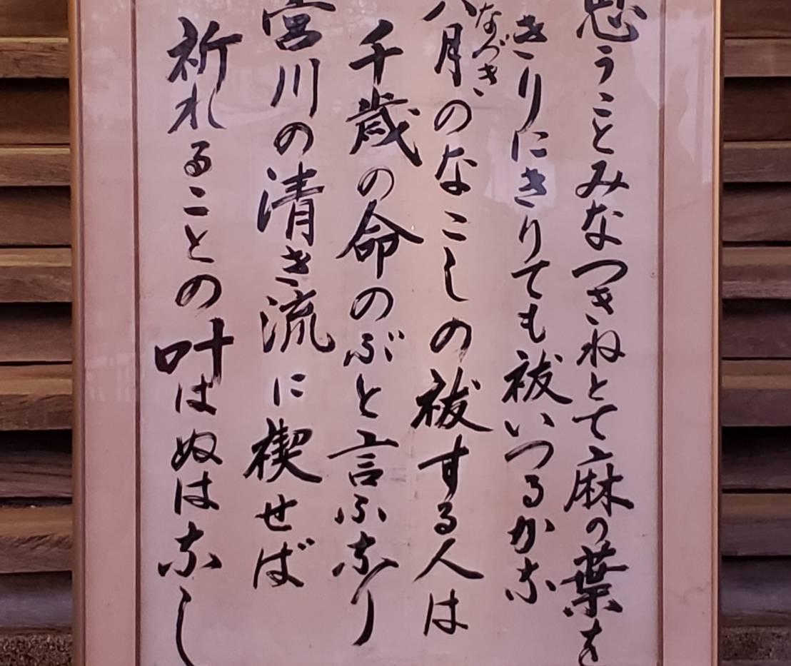 20200630放生津八幡宮夏越しの大祓式.jpg