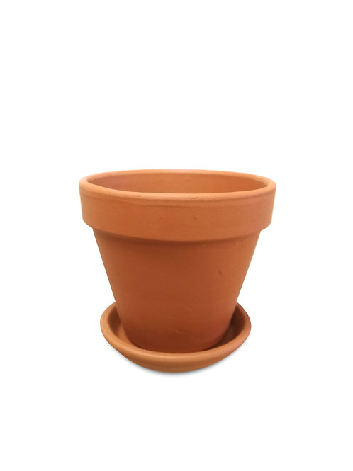 "Terracotta Pot with Saucer 6"""