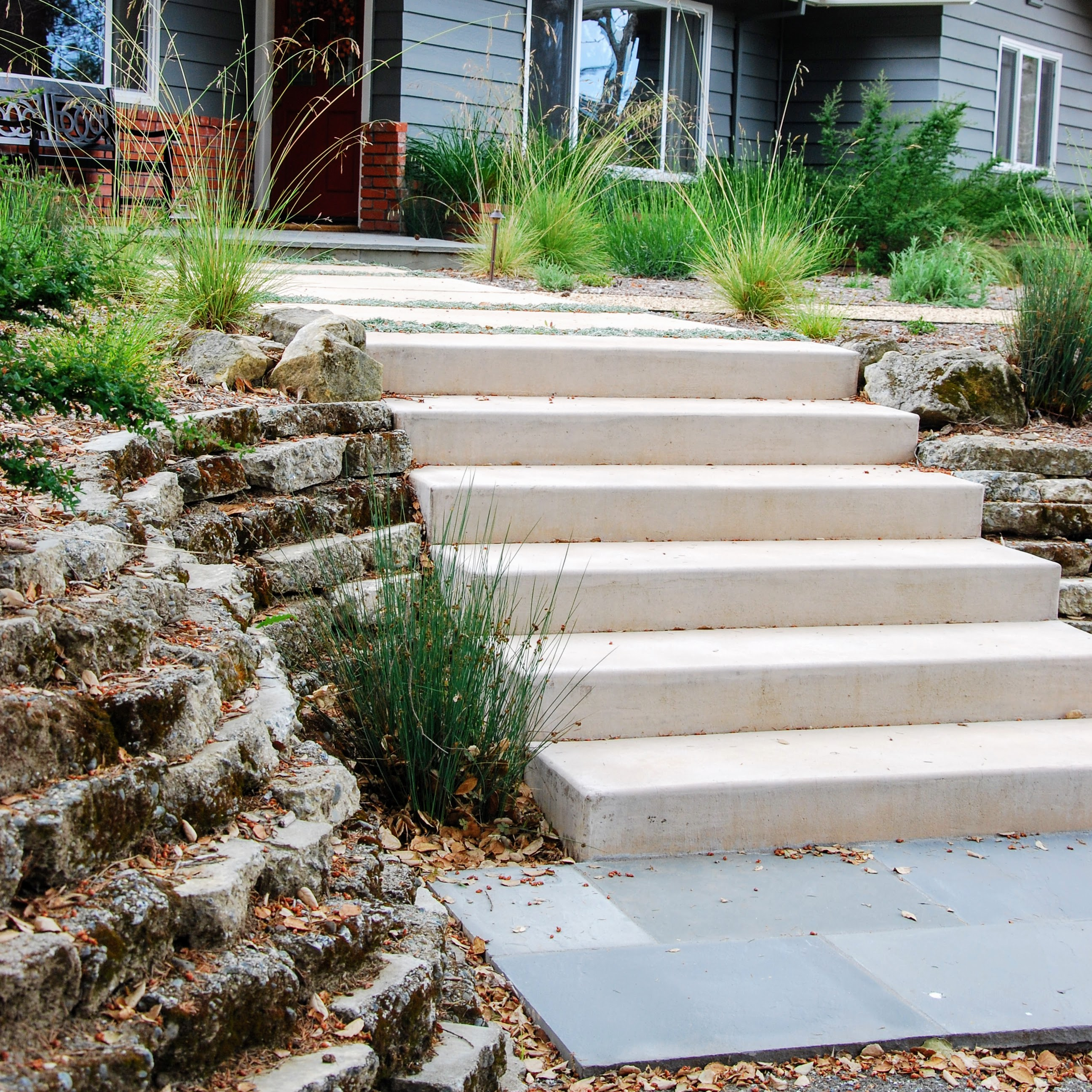 Los Gatos Santa Cruz Mointains Landscape Concrete Steps