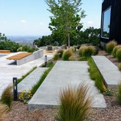 Los Gatos Modern Landscape After 1
