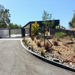 Los Gatos  California Modern Landscape Progress 6