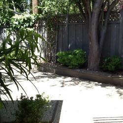 Palo Alto Landscape Before