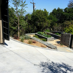 Los Gatos  California Modern Landscape Vegetable Garden 1
