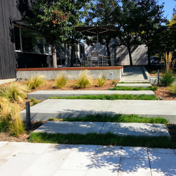 Los Gatos Modern Landscape Concrete Slab Steps 1