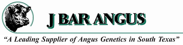 J Bar Angus - A Leading Supplier of Angus Genetics in South Texas