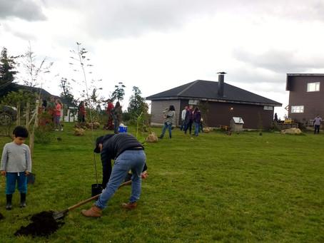 Alumnos y apoderados plantando arbolitos para el colegio
