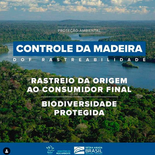 Controle da Madeira - DOF Rastreabilidade