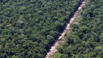 Floresta Amazônica Foto: Thiago Queiroz/Estadão