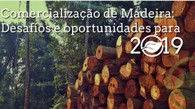 Comercialização de Madeira -  Desafio e Oportunidades