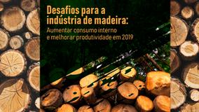 Os Desafios da Indústria Madeireira para 2019