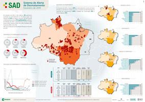 Desmatamento na Amazônia diminuiu em fevereiro, diz Imazon