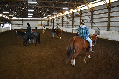 Horse therapy balace